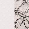 шампанева сітка горох/чорно-шампанева вуаль мережи